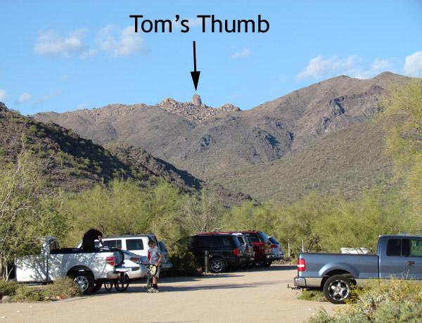 Toms Thumb 096