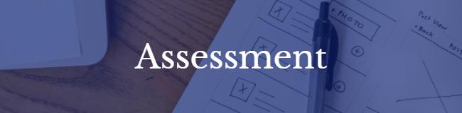 Assessment_Website_Banner.png